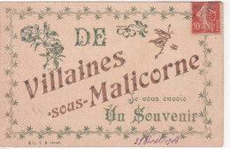 ¤¤  -  VILLAINES-sous-MALICORNE  -  Je Vous Envoie Un Souvenir De .......  Carte Fantaisie à Paillettes   -  ¤¤ - France