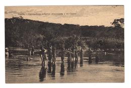 ANGOLA - Carregadores Indigenas Atravessando O Rio Cunene. Carte Postale - Angola
