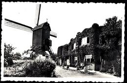 Beveren IJzer - Oude Molen - Vieux Moulin - Belgio