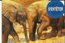 Carte  Neuve  D'un Couple D'Elephants  ( Si On Arretait De  S'ENTETER Tous Les Deux ! ? ! ) - Elephants
