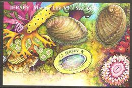 Jersey 2006 Marine Life Sea Shells Marina Meeresfauna Muscheln Meeresschnecken Michel No. Bl.55 (1230) MNH Postfr. Neuf - Jersey