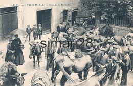 TARDETS - N° 147 - FOIRE DE LA PENTECOTE - France