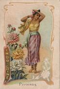 INDOCHINE    ---    Pivoines - Cartes Postales
