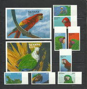 GUYANA 1993  Birds, Parrots  8v.+ 2 SS Imperf. Margins  Rare! - Perroquets & Tropicaux
