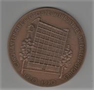 Médaille Bronze_ Rotary Club - XX é  Anniversaire ( 1957/1977 ) - Non Classés