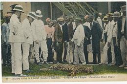 20 Leopard Killed In Lagos Southern Nigeria Comptoirs Henri Dupuy Hand Colored - Nigeria