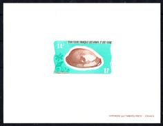 "AFARS ET ISSAS - N° 423 - Epreuve De Luxe - Coquillage ""Cypraea Exhusta"".- - Afars Et Issas (1967-1977)"