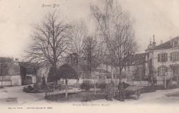 20U - 88 - Saint-Dié - Vosges - Place Haxo ( Petit Parc) - N° 2595 - Saint Die