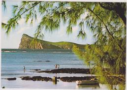 Ile Maurice,océan Indien,MAURITIUS,COIN DE MIRE - Maurice