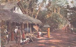 Ceylon, Boralesgamuwa : A Rural Scene    (Sri Lanka)  (Ceylan) - Sri Lanka (Ceylon)