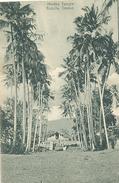 Ceylon, Badulla, Hindoo Temple (Sri Lanka)  (Ceylan) - Sri Lanka (Ceylon)