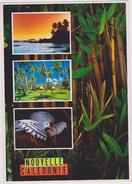Nouvelle Calédonie ,archipel D´océanie,océan Pacifique,prés De L´australie Et Nouvelle Zélande - Nouvelle-Calédonie