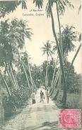 Ceylon, Colombo, A Bye Path (Sri Lanka)  (Ceylan) - Sri Lanka (Ceylon)