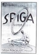 156c CICLI SPIGA MONCALIERI - Cyclisme