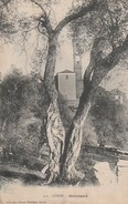 2B - VENZOLASCA - L'EGLISE - Francia