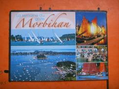 236) La Semaine Du Golfe Morbihan : Regates,multivues  :  RECTO-VERSO - France