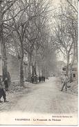 Valensole: La Promenade De Tholonet. - Francia