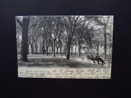 Postcard US USA Mobile Alabama Bienville Square Via New York 1905 To Christiansand Kristiansund