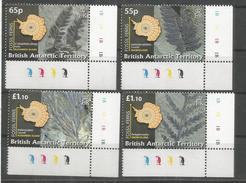 BRITISH ANTARCTIC TERRITORY ANTARTIDA POLO SUR ANTARCTICA FOSILES FOSSILS VEGETAL TREE - Filatelia Polar