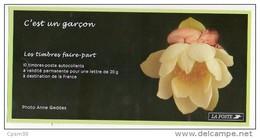 Timbres - C'est Un Garcon - Faciale 9.00 Euro; - Valeur Permanent - N° 3805 - Markenheftchen