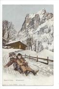 16120 - Sport D'Hiver Wintersport Partie De Luge - Sports D'hiver