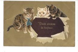16126 -  Trois Chats Apportant Voeux Sincères De Bonheur Carte En Relief - Nouvel An