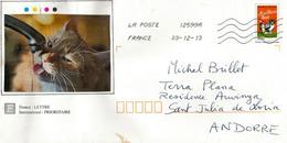Meilleurs Vœux (chat Et Souris), Sur Lettre Adressée ANDORRA - Chats Domestiques