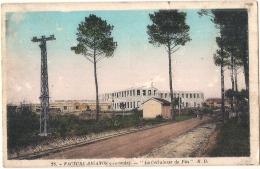 -33- FACTURE BIGANOS  La Cellulose Du Pin - Micro Pelurage  Voyagé  - Bassin D'Arcachon - Other Municipalities