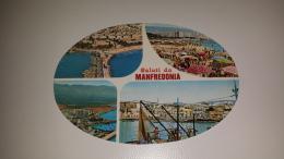 C-48727 SALUTI DA MANFREDONIA PANORAMA PORTO SPIAGGIA - Manfredonia