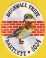 Fruits & Vegetables - Duckwall Fruit, Bartlett (FL4024) - Fruits Et Légumes