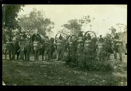 Indonesia  Indonesië   Olifanten  Olifant  éléphant  - Carte Photo  Fotokaart - Indonésie