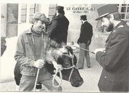 44  LE  GAVRE    SERIE  EVENEMENTS   LE  18  MARS  1981   MARQUAGE  DES  BETES  A  CORNES - Le Gavre