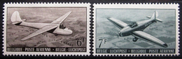 BELGIQUE                P.A 28/29                 NEUF* - Luftpost