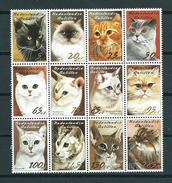 2003 Netherlands Antilles Complete Set Cats,katten,katze MNH/Postfris/Neuf Sans Charniere - Curaçao, Antilles Neérlandaises, Aruba