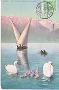 BARQUE(S) SUR LE LAC LEMAN  - ILLUSTRATION, ANIMEE ET CYGNES -10.09.08 - - VD Vaud