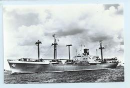 "Nedlloyd - M.s. ""Merwe Lloyd"" - Tankers"