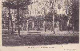 Macon - Restaurant Du Stand (terrasse, Kiosque) Pas Circulé - Macon