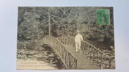 COCHINCHINE SAIGON LE PONT DU KIOSQUE AU JARDIN BOTANIQUE ASIE CPA Animee Postcard - Cartes Postales