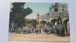 ANNAM HUE ELEPHANT S'AGENOUILLANT DEVANT LE PALAIS DU COMAT ASIE CPA Animee Postcard - Cina
