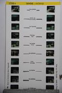 LESTRADE :  1733 C  SAVOIE   : AVORIAZ - Visionneuses Stéréoscopiques