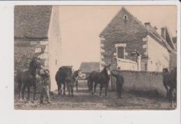 CPA - L'Elevage En PERCHE - Ferme Du BOIS JOLY - Sortie Des Etalons - Cheval Chevaux - Autres Communes