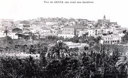 # Vue De Jaffa ( Du Côté Des Jardins ) - Israel