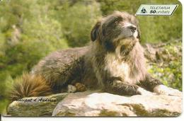 CARTE^-PUCE-ANDORRE-50U-AND 76-SC7-07/97-CHIEN CONCOURS-UTILISE-TBE - Andorre