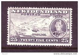 Newfoundland 242  *  SEALING FLEET SHIP - Newfoundland