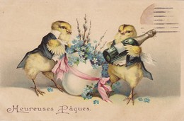 POUSSINS Humanisés Avec Champagne--heureux Pâques---voir 2 Scans - Easter