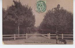 CHAMPS SUR MARNE - Avenue Du Bois - Other Municipalities