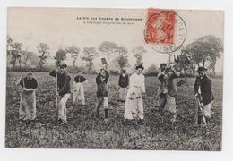 BOURGOGNE - L'arrachage Des Pommes De Terre - Bourgogne