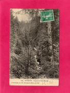 88 VOSGES, LE VALTIN, Gorge De La Petite Meurthe, (A. Reichenbach) - Senones