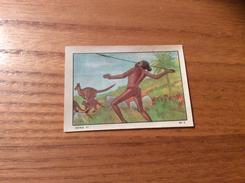 Chromo NESTLÉ ET KOHLER - SÉRIE 95 N°3 (aborigène, Kangourou) - Nestlé