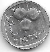 Israel 5 Agorot  1977 Km 25B  PROOFLIKE - Israel